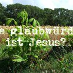 Wie glaubwürdig ist Jesus?